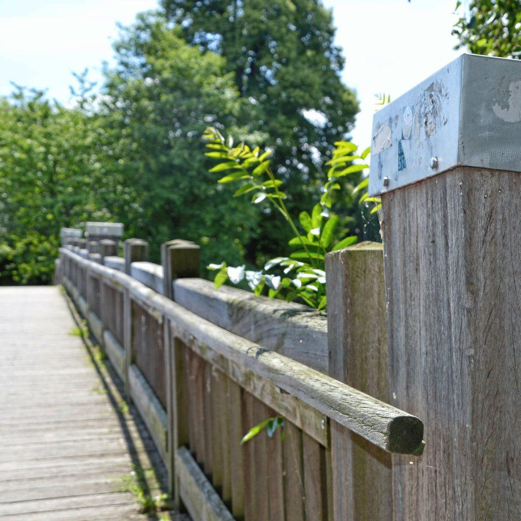 Der Hayns Park in Eppendorf 14