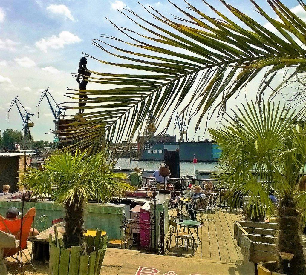 Strandpauli Beachclub Palmen