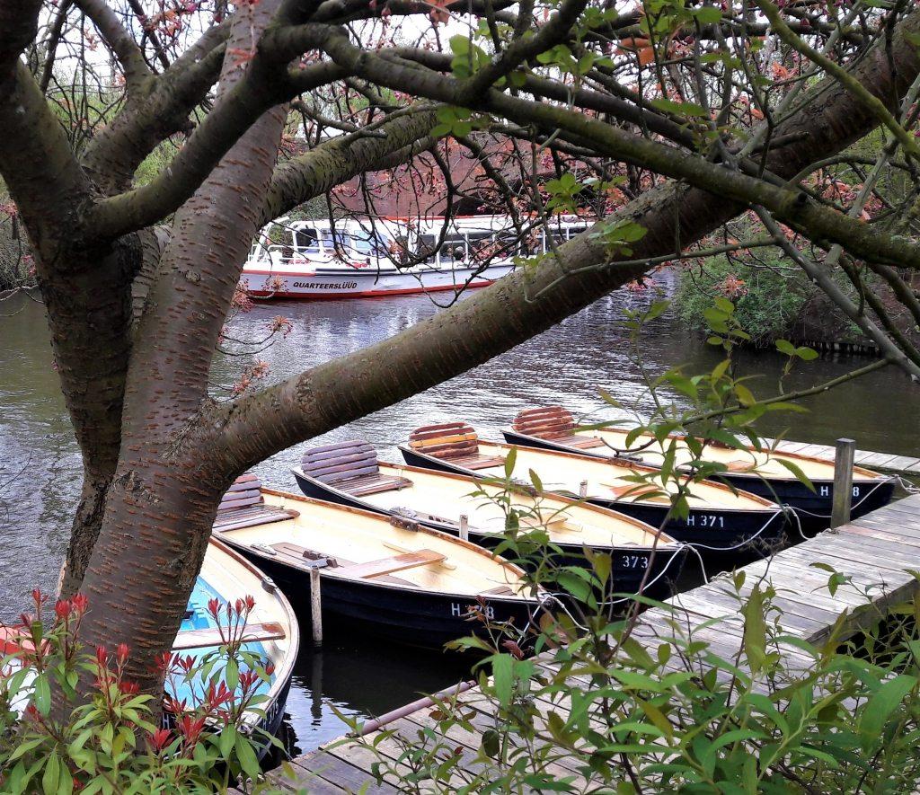 Quarteerslüüd Rundfahrt Stadtpark Hamburg