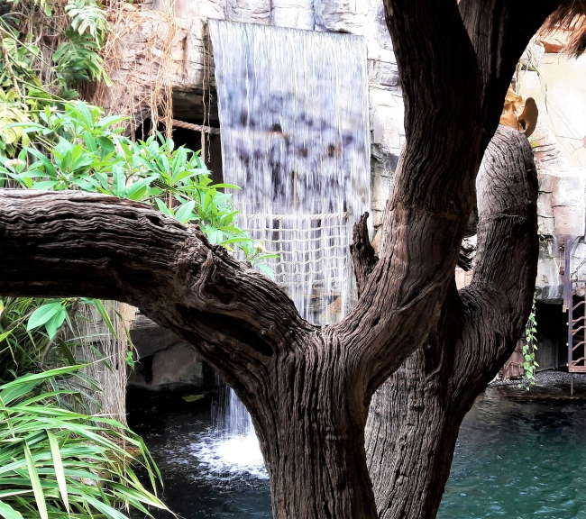 Wasserfall Tropen-Aquarium Hagenbeck Hamburg