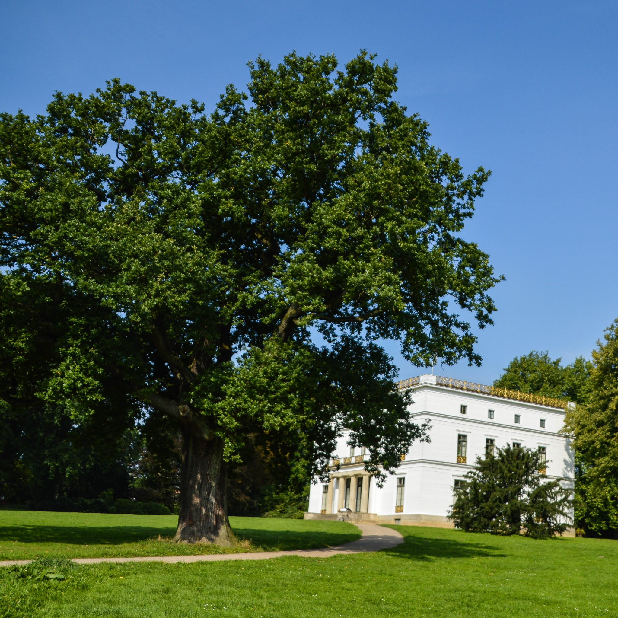 Jenischhaus im Jenischpark