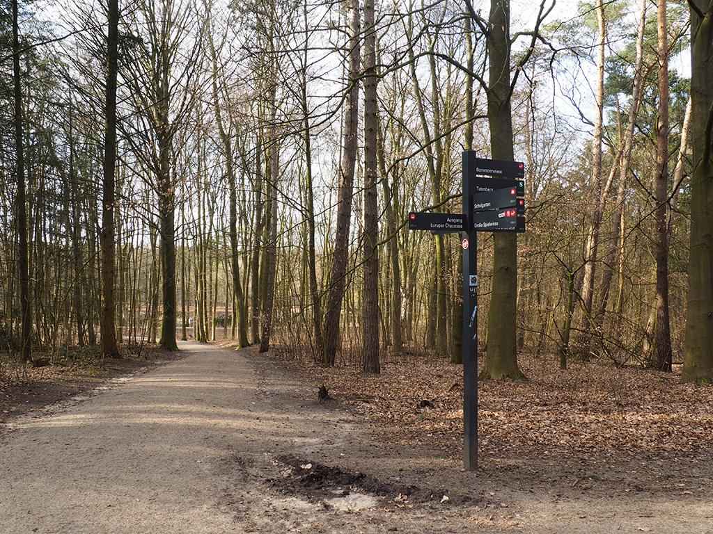 Joggen Volkspark