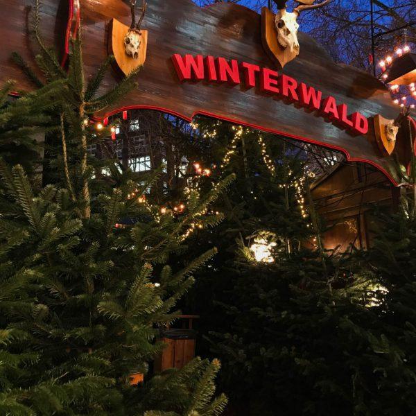 Im Winterwald am Gerhard Hauptmann Platz