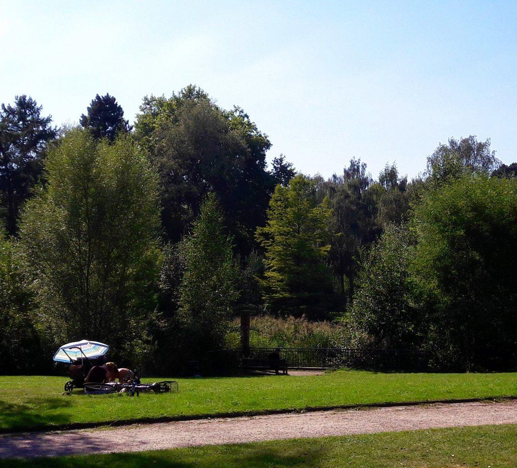 eppendorfer park beim uke hamburg