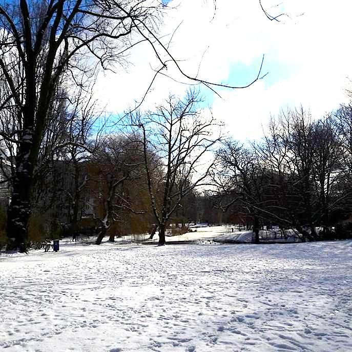 Wintereinbruch Februar 2018 Am Weiher Hamburg Eimsbüttel