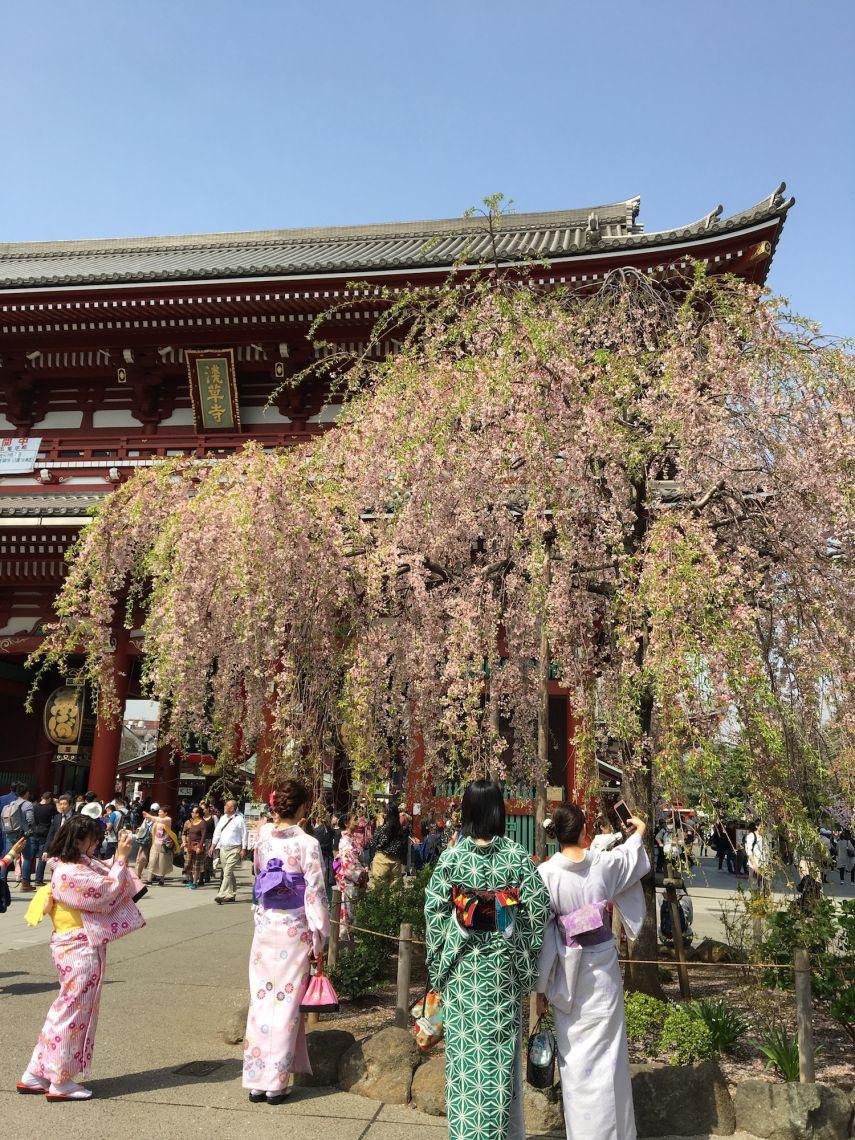 tokio_vs_hamburg_tempel